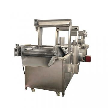 Automatic French Fries Potato Chips Fryer Snack Food Frying Machine